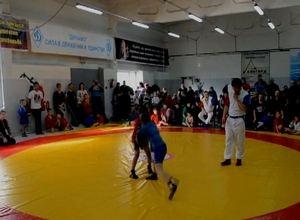 Саяногорцы завоевали 4 награды по самбо