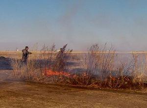 В окрестностях Саяногорска горели более 4 с половиной миллионов квадратных метров степи