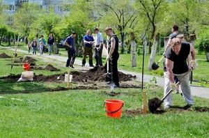РУСАЛ приглашает саяногорцев высадить деревья