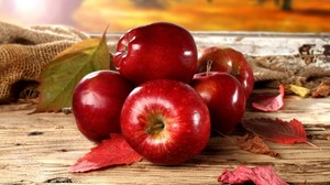 В Саяногорске пройдет фестиваль «День яблока в поселке Майна»