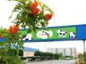 Саяногорские бизнесмены будут соревноваться в благоустройстве города