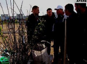 «Зеленая волна» Саяногорска ждет новых участников
